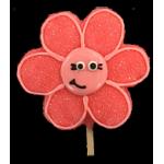 Cutie Flower Coral