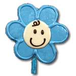 Flower Baby Boy Blue