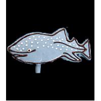 Whale Shark
